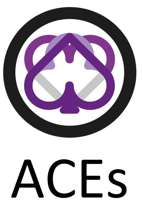 Camiseta ACEs texto