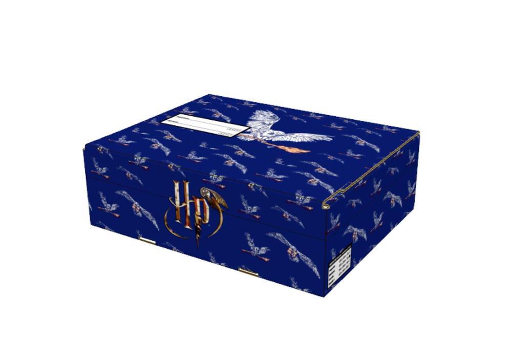 Caja mediana Harry Potter